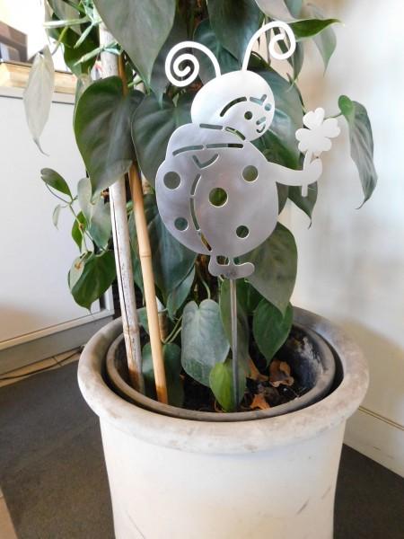 Marienkäfer mit Gartenstecker
